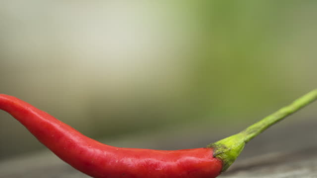 Red chili pepper Red chili pepper,digital enhagement chili pepper stock videos & royalty-free footage