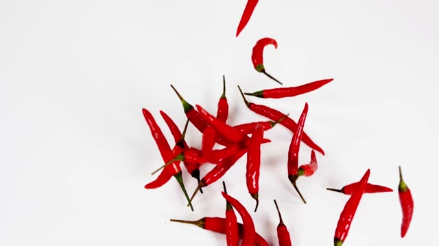 Red Chili Peppers, capsicum annuum falling against With Background, Slow Motion 4K Red Chili Peppers, capsicum annuum falling against With Background, Slow Motion 4K chili pepper stock videos & royalty-free footage