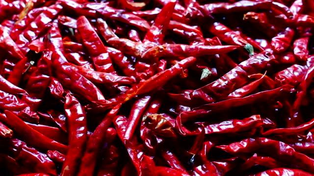 red chili rotate red chili rotate chili pepper stock videos & royalty-free footage
