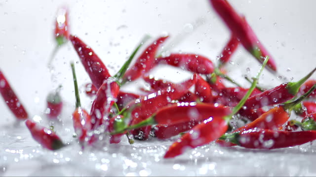 SLO MO Red chilies bouncing off water covered white surface