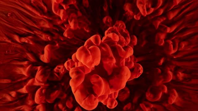 slo mo czerwona symfonia kolorów na czarnym tle - czerwony filmów i materiałów b-roll