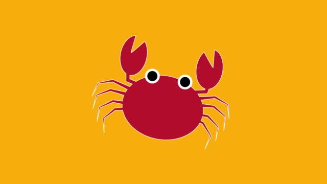 red crab - granchio video stock e b–roll