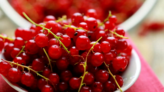 red currant berry rotation - ribes rosso video stock e b–roll