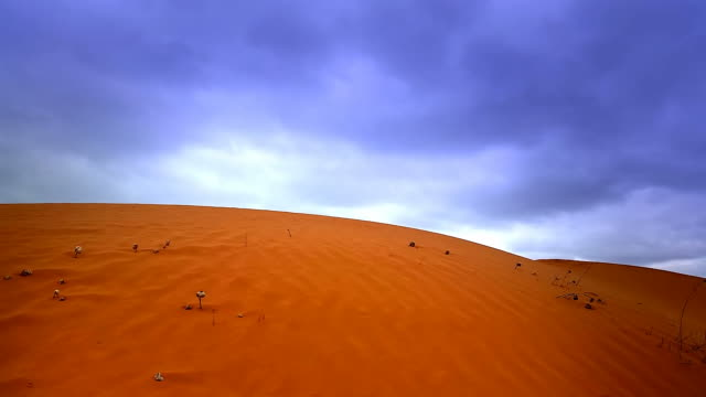 Red Desert Sand Dune Landscape video