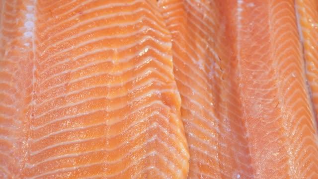 vídeos de stock e filmes b-roll de red fish fillet fresh seafood texture product - meat texture