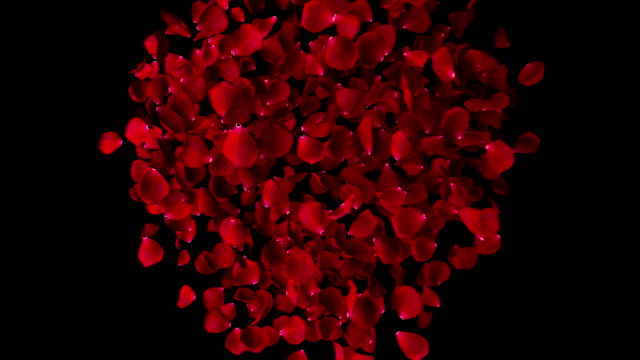 red heart shape of rose petals flowing in vortex on black background with alpha channel matte, love and valentine day holiday festive event video