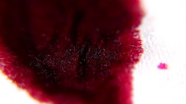 Red Ink / Blood absorbing into a Bandage MACRO Red ink or blood is dripping and absorbing into a bandage medevac stock videos & royalty-free footage