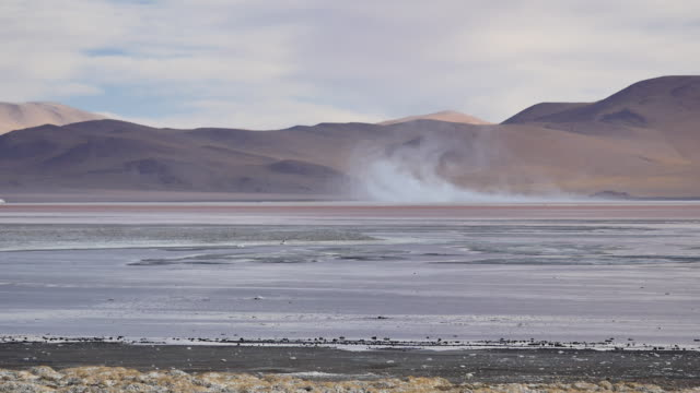 Red Lagune with salt storm in background Not stabalized Video, its very windy in this area. red-colored microorganisms stain the lake red under certain wind conditions wasser videos stock videos & royalty-free footage
