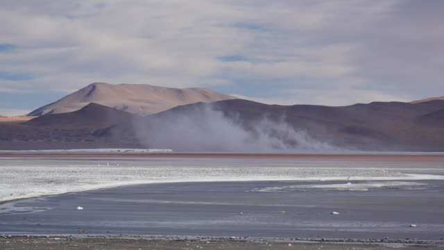Red Lagune with salt storm Not stabalized Video, its very windy in this area. red-colored microorganisms stain the lake red under certain wind conditions wasser videos stock videos & royalty-free footage