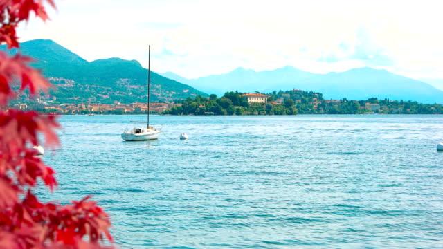 vídeos de stock e filmes b-roll de red maple leaves, scenic landscape. - lago maggiore