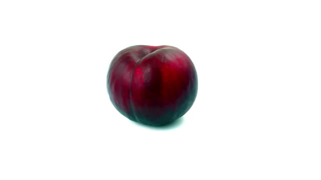 Red Plum on white background video