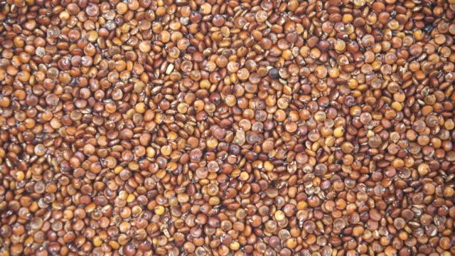 vídeos y material grabado en eventos de stock de semillas de quinua roja como fondo - antioxidante