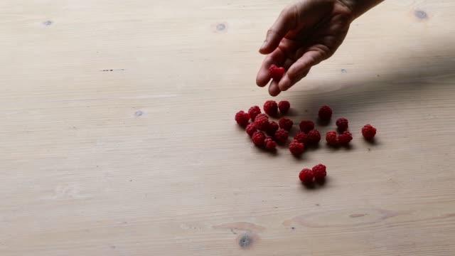 red raspberries - sostanza gelatinosa video stock e b–roll