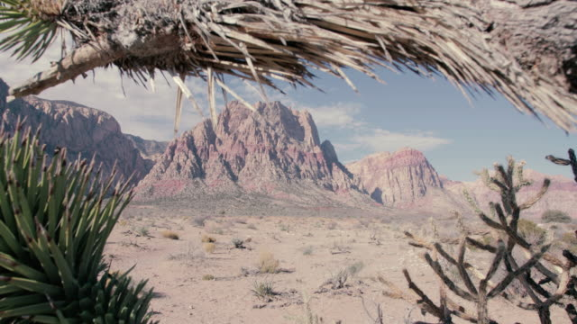 red rock canyon - 4k - red rock canyon national conservation area video stock e b–roll