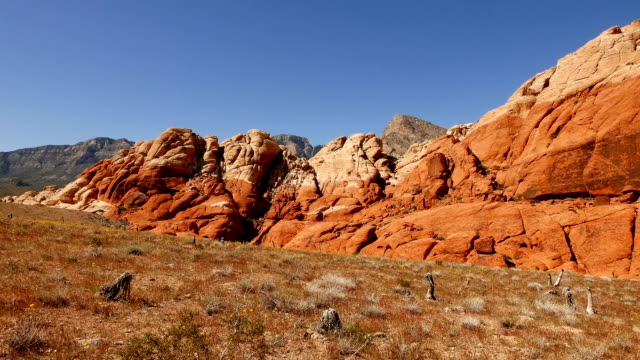 parco nazionale di red rock canyon, nevada - red rock canyon national conservation area video stock e b–roll