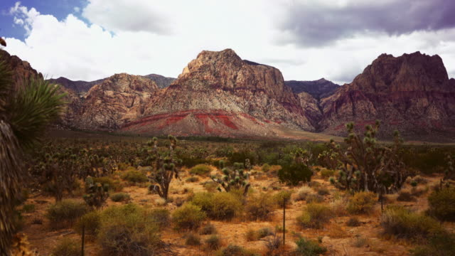 red rock canyon state park - parco statale del red rock canyon video stock e b–roll