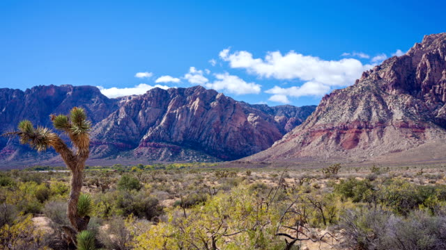 red rock canyon time lapse video - red rock canyon national conservation area video stock e b–roll