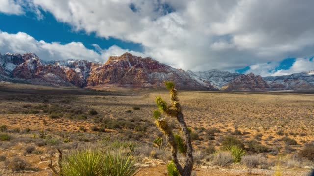 red rocks state park pan 180 degrees cactus snow in the desert time lapse  4k - nevada video stock e b–roll