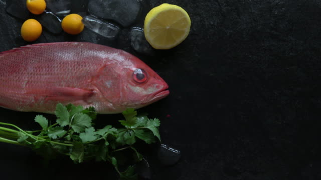 Red Snapper Fresh and Raw on Ice with Fresh Garnish