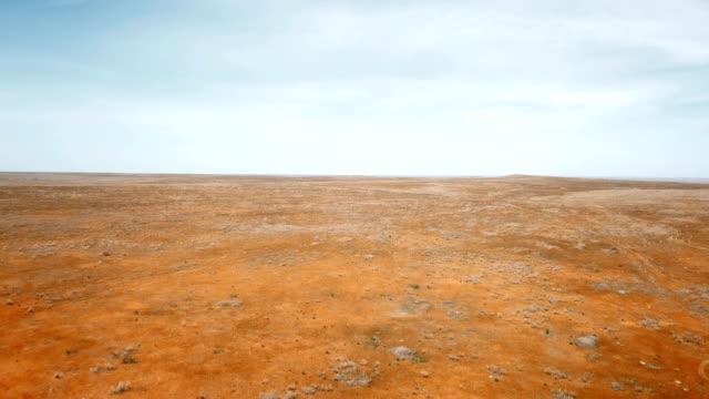 red steppe - дикая местность стоковые видео и кадры b-roll