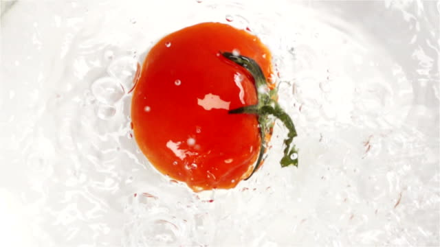 Red tomato falling and plunging in water video