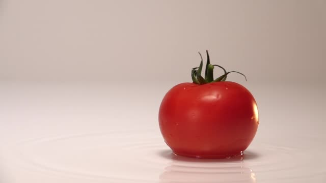 Red tomato falling in water on white table in white wall background. Slow Motion 240 fps - vídeo