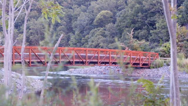 Red Walking Bridge 01 video