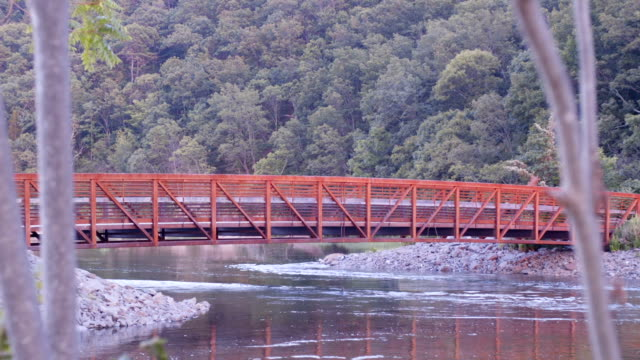 Red Walking Bridge 02 video