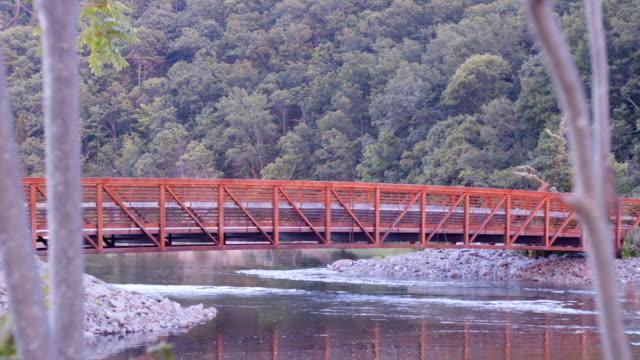 Red Walking Bridge 03 video
