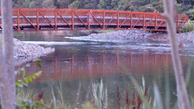 Red Walking Bridge 04 video