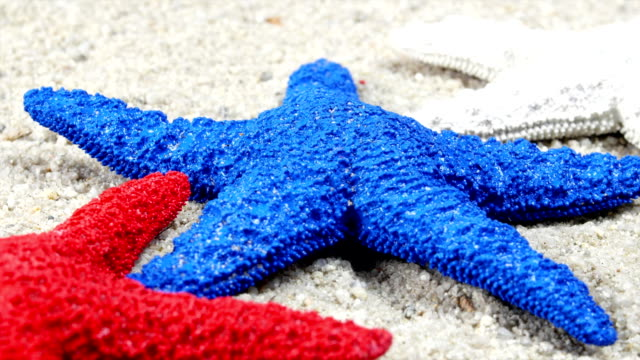 Red, white and blue starfish video