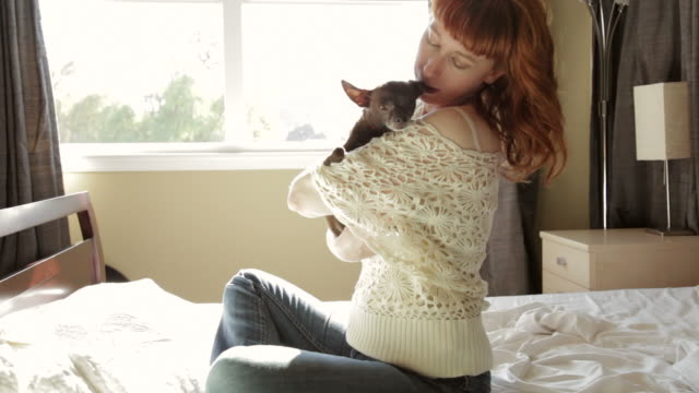 Redhead woman sitting in bed holding her small dog  dyed red hair stock videos & royalty-free footage