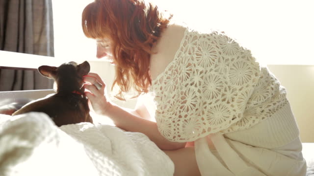 Redhead woman sitting in bed petting dog  dyed red hair stock videos & royalty-free footage