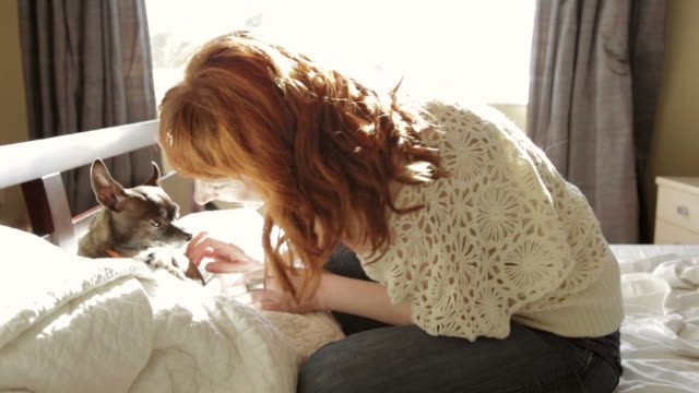 Redhead woman sitting in bed petting her small dog  dyed red hair stock videos & royalty-free footage