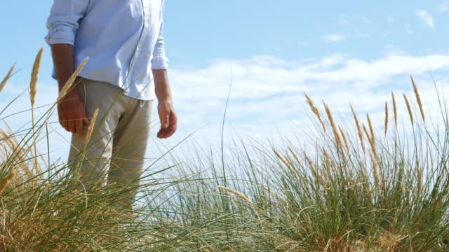 reeds and dunes, man lower body. - krajobraz morski filmów i materiałów b-roll