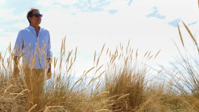reeds and dunes, man walking. - krajobraz morski filmów i materiałów b-roll
