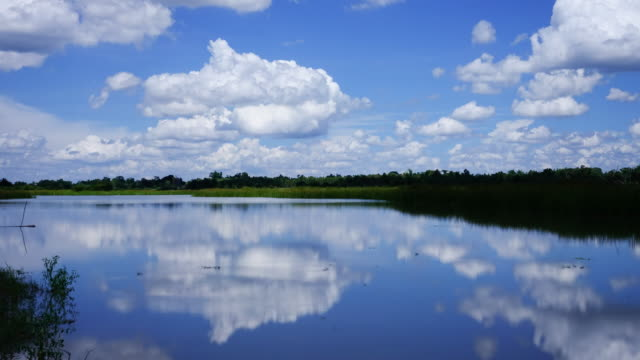 Reflection Lake With Cumulus Clouds video