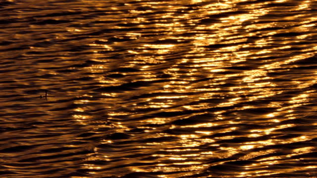 Reflection of sunlight on water. video