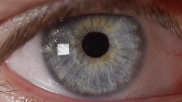 SLOW MOTION MACRO Reflective blue male eye observing surroundings in bright room video