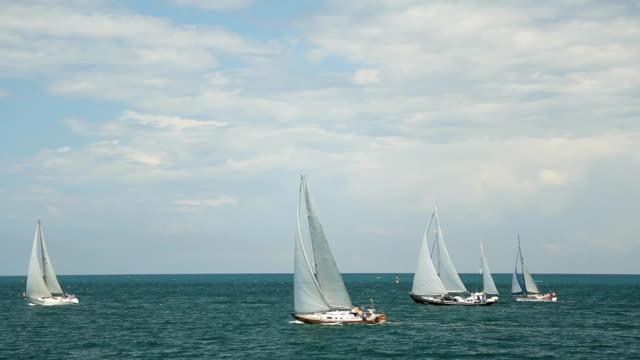 Regatta on the high seas video