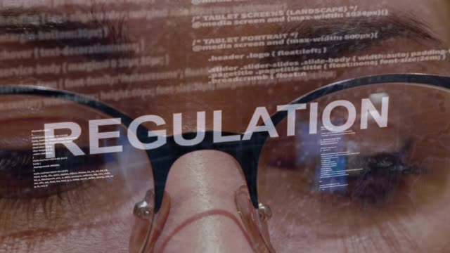 Regulation text on female software developer