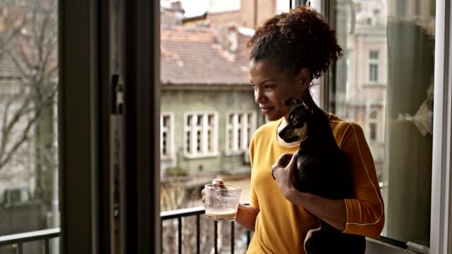 rilassarsi sul balcone - animale domestico video stock e b–roll