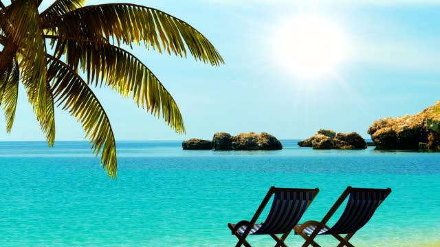 entspannen sie am strand unter palmen in den tropen - sun chair stock-videos und b-roll-filmmaterial