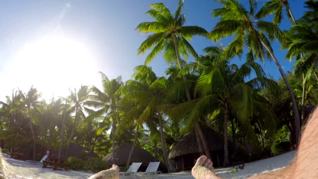 4K FPV SLOW MOTION CLOSE UP: Relaxed man enjoying vacation laying on sun lounger daybed on fantastic sunny beach with beautiful lush palm trees at luxury hotel resort with beachfront villas video