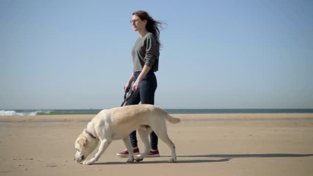 Relaxed woman in eyeglasses strolling with dog on seashore