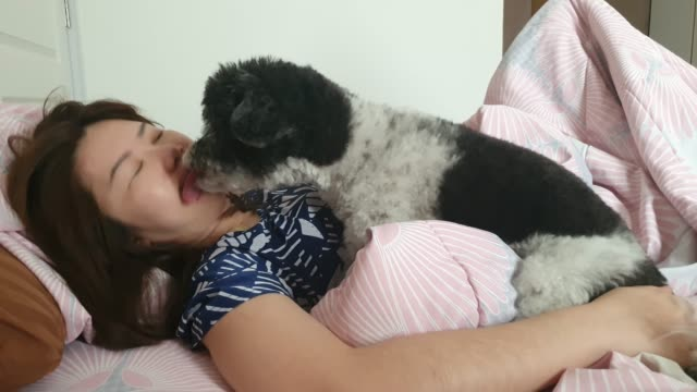 relaxing at home with a playful puppy licking his face