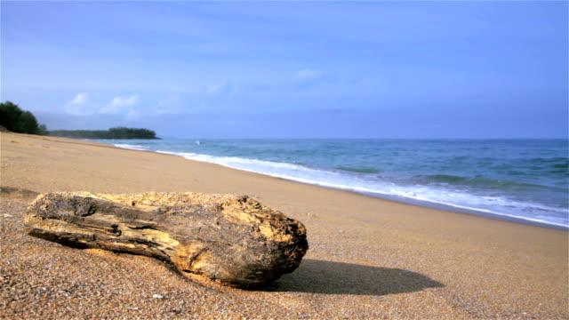 Relaxing Beaching Scene video