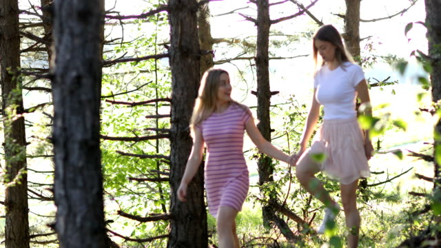 Relaxing summer walk in nature - video