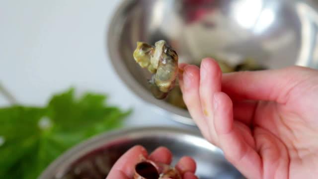 vídeos y material grabado en eventos de stock de eliminar snails de cápsulas vacías - comida francesa