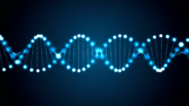 3D rendered animation of rotating DNA glowing molecule. Genetics concept. video